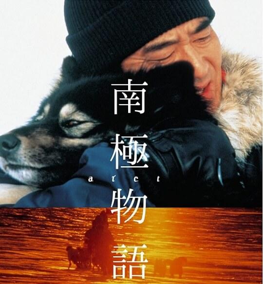 おすすめ邦画『南極物語』